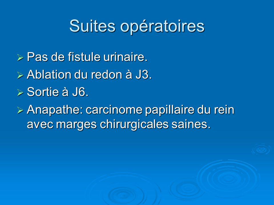 Suites opératoires  Pas de fistule urinaire.  Ablation du redon à J3.  Sortie à J6.  Anapathe: carcinome papillaire du rein avec marges chirurgica