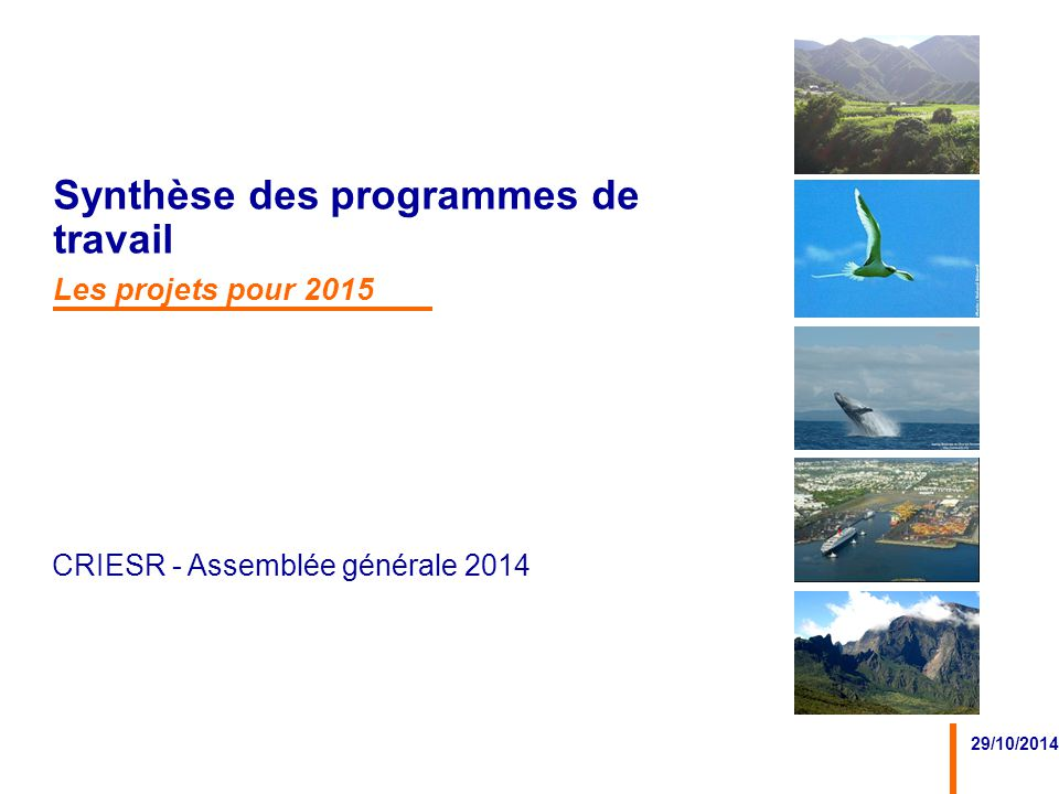 CRIESR - Assemblée générale 2014 29/10/2014 Synthèse des programmes de travail Les projets pour 2015