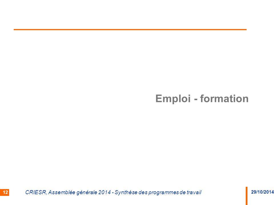 29/10/2014 CRIESR, Assemblée générale 2014 - Synthèse des programmes de travail 12 Emploi - formation