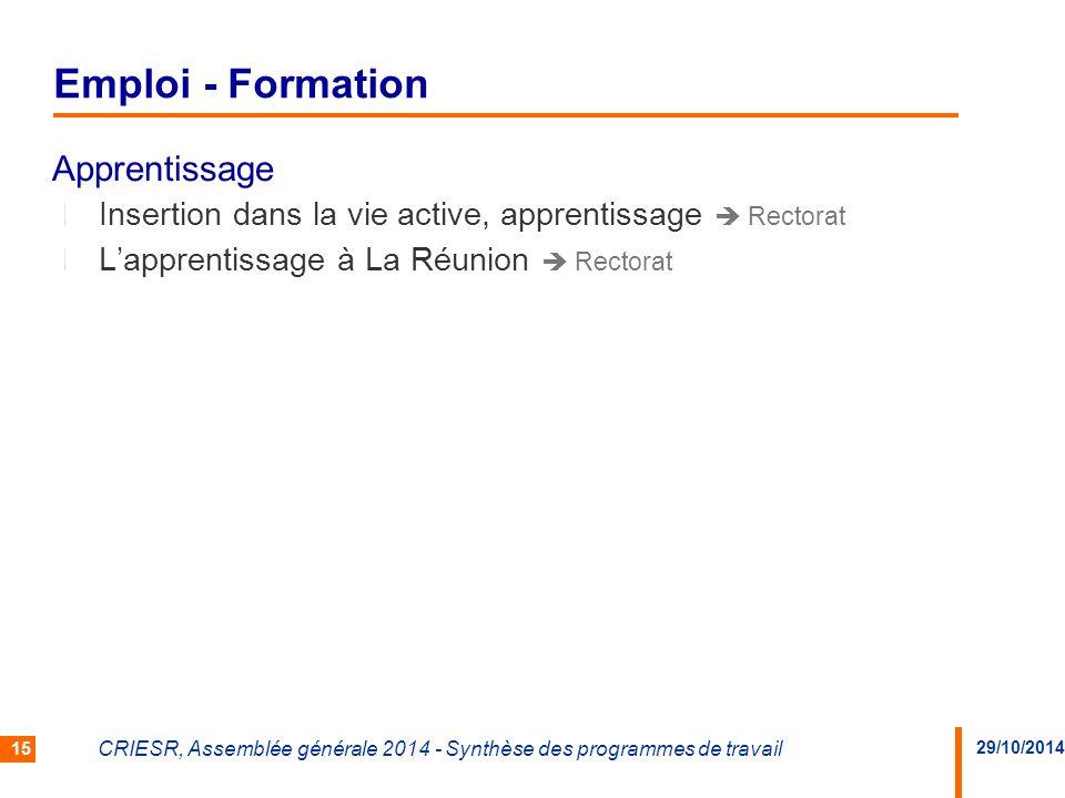 29/10/2014 CRIESR, Assemblée générale 2014 - Synthèse des programmes de travail 15 Apprentissage Insertion dans la vie active, apprentissage  Rectorat L'apprentissage à La Réunion  Rectorat Emploi - Formation
