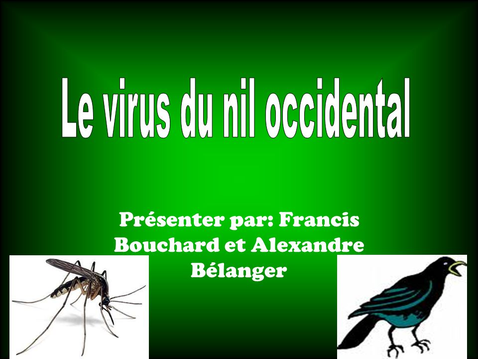 Présenter par: Francis Bouchard et Alexandre Bélanger