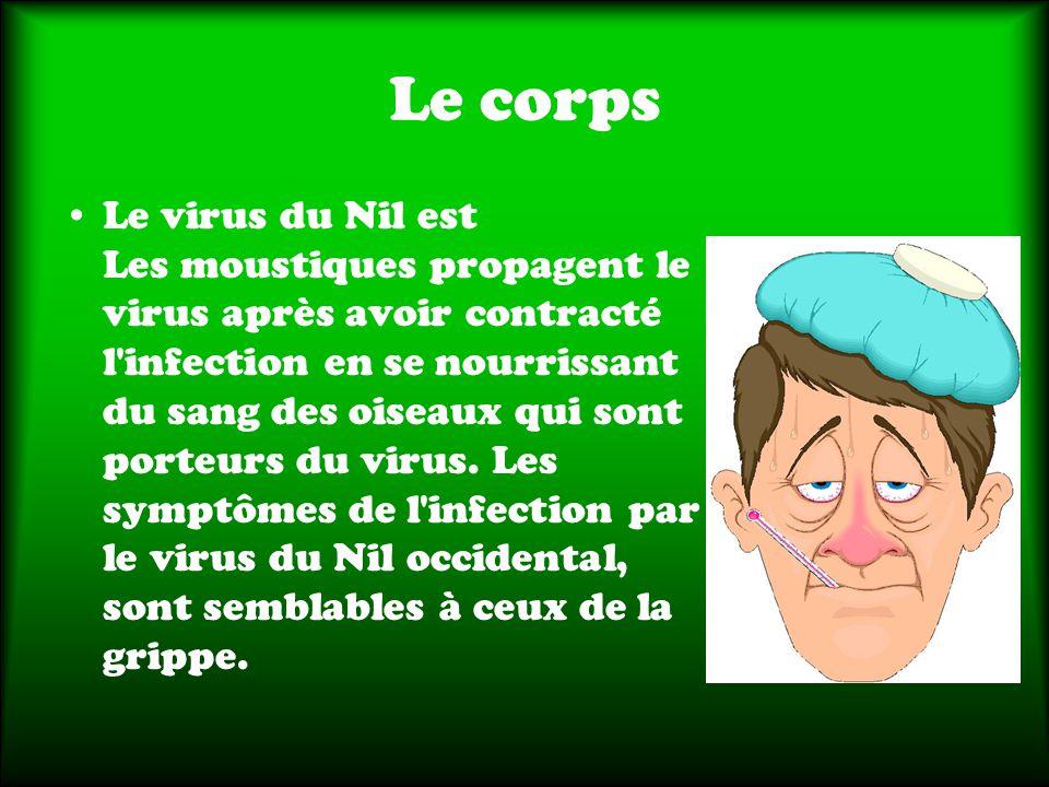 Le corps Le virus du Nil est Les moustiques propagent le virus après avoir contracté l infection en se nourrissant du sang des oiseaux qui sont porteurs du virus.