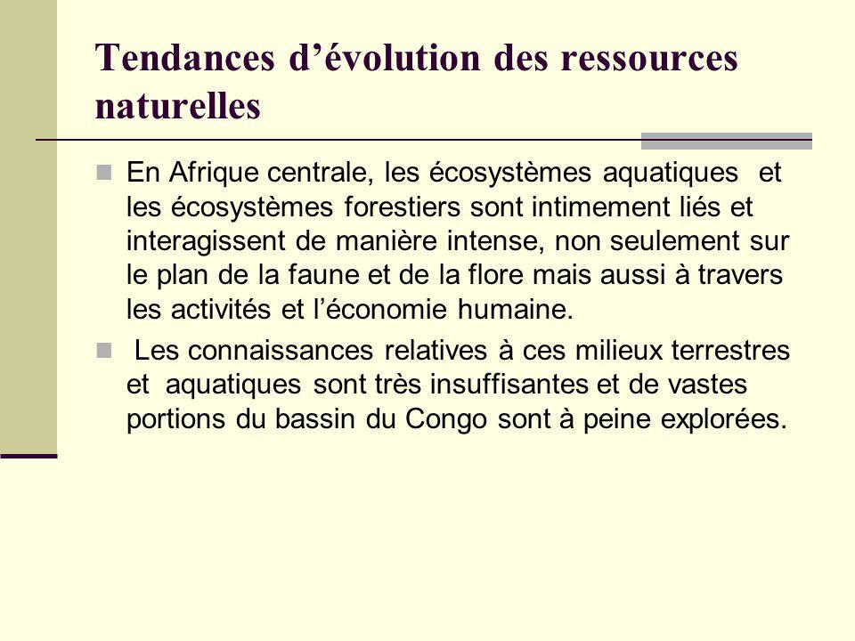 Tendances d'évolution des ressources naturelles En Afrique centrale, les écosystèmes aquatiques et les écosystèmes forestiers sont intimement liés et