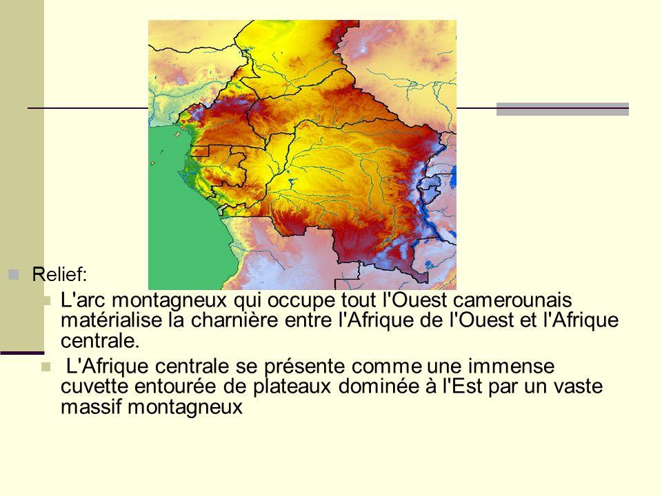 Relief: L'arc montagneux qui occupe tout l'Ouest camerounais matérialise la charnière entre l'Afrique de l'Ouest et l'Afrique centrale. L'Afrique cent