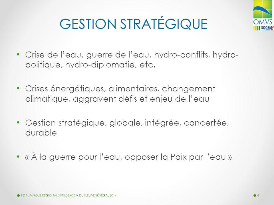 GESTION STRATÉGIQUE Crise de l'eau, guerre de l'eau, hydro-conflits, hydro- politique, hydro-diplomatie, etc. Crises énergétiques, alimentaires, chang