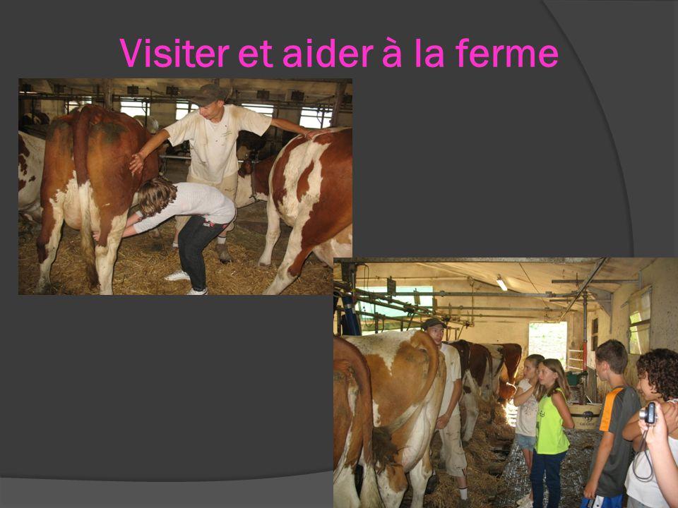 Visiter et aider à la ferme