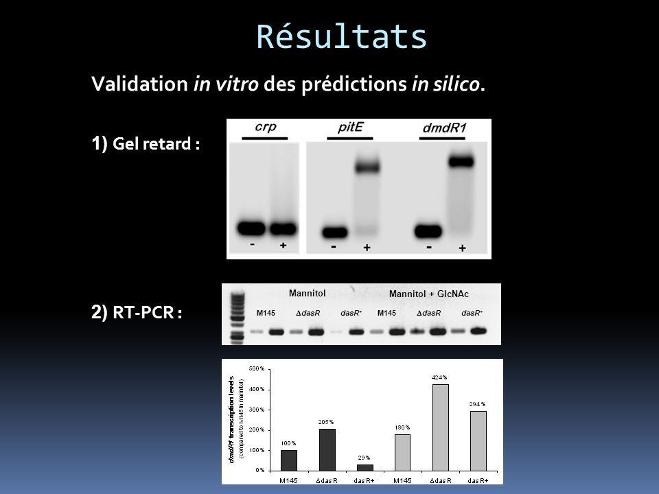 Résultats Cascade signalétique dasR/GlcNAc-dépendante. Desferriox.Coelichelin