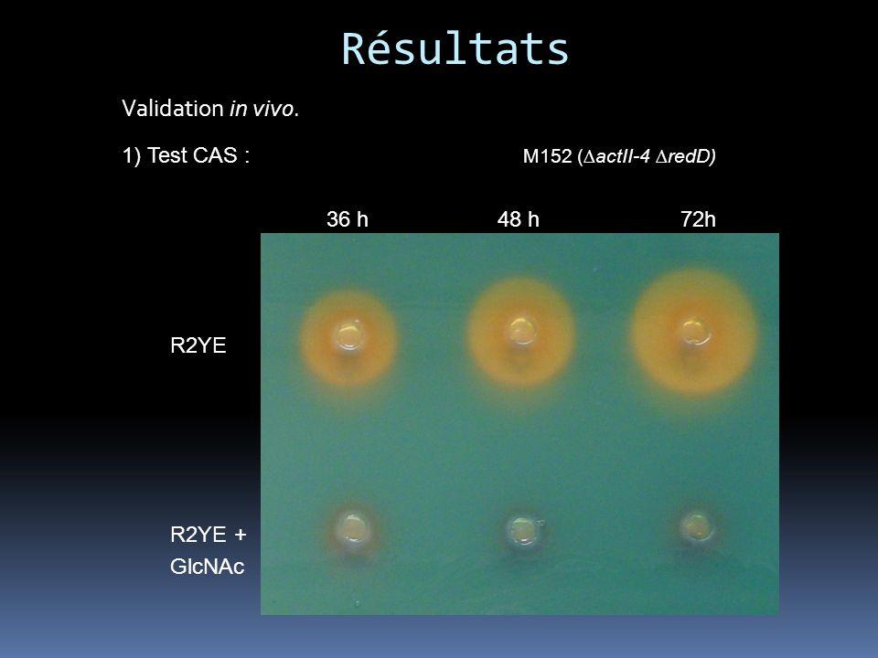 Résultats Validation in vivo.