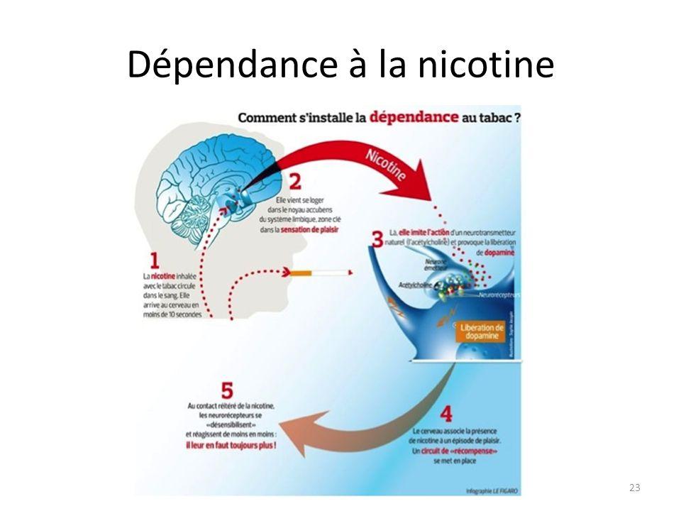 Dépendance à la nicotine 23