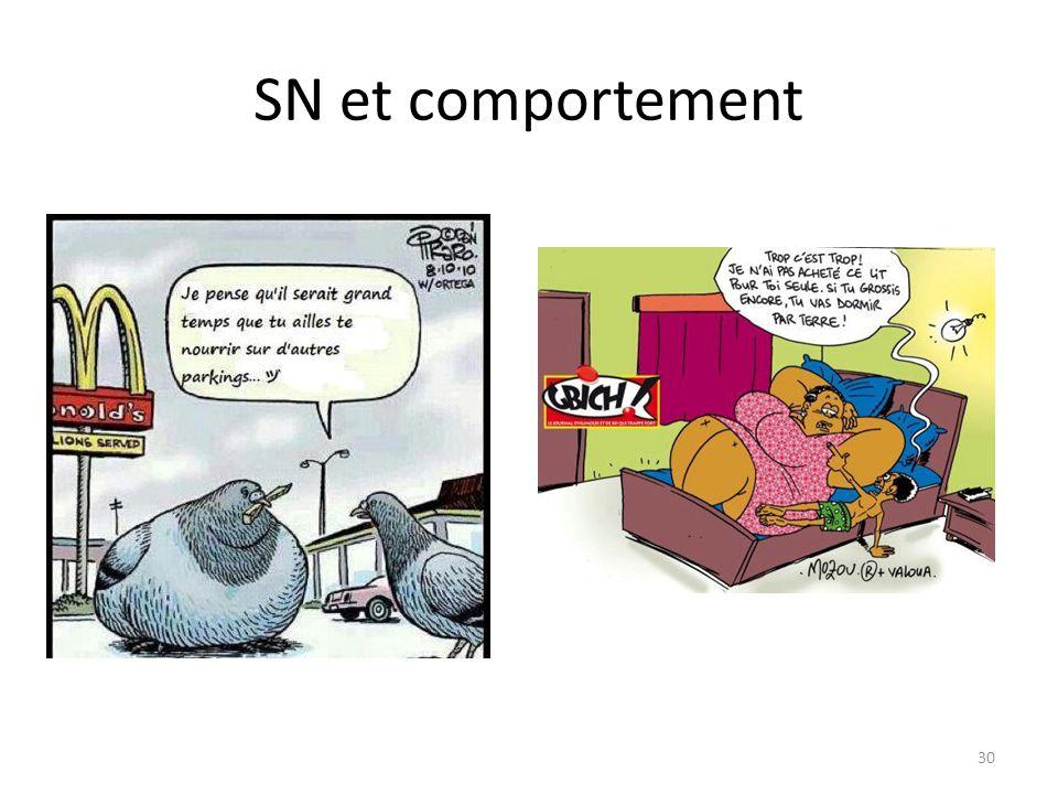 SN et comportement 30