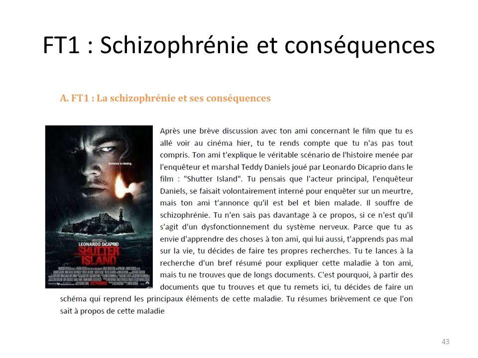 FT1 : Schizophrénie et conséquences 43