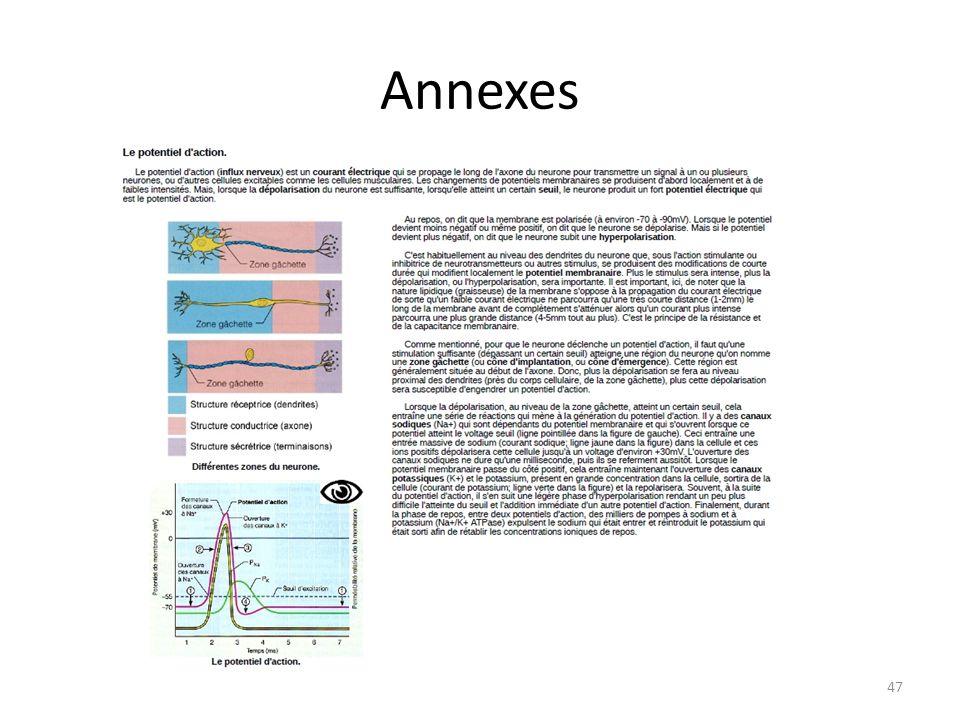 Annexes 47