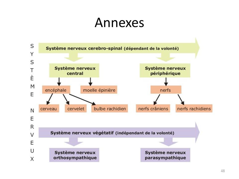 Annexes 48