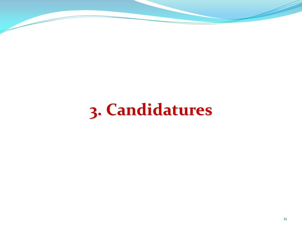 11 3. Candidatures
