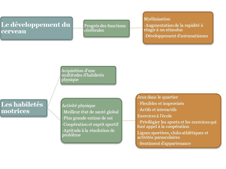 LE DEVELOPPEMENT COGNITIF CHEZ L'ENFANT DE 6 A 12 ANS Piaget et la période opératoire concrète 1 er niveau : Les opérations concrètes simples Acquisition de la notion de conservation -Certaines propriétés des objets ne changent pas quand on en modifie que la forme ou la disposition Acquisition du concept de classification -Répartition d'objets dans des classes ou des catégories selon des règles et des critères logiques appliqués 2 e niveau : les opérations concrètes complexes spatio- temporelles Construction de l'espace - Mesure, conservations, correspondances des droites, des parallèles, des angles, des périmètres, des surfaces Construction du temps, de la vitesse et du mouvement