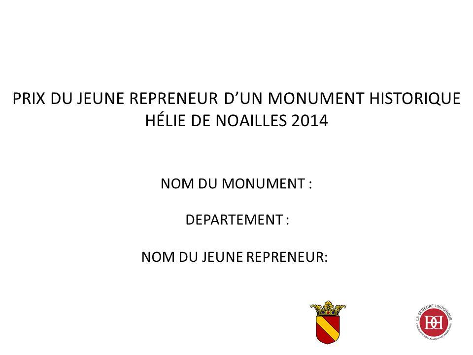 NOM DU MONUMENT : PRIX DU JEUNE REPRENEUR D'UN MONUMENT HISTORIQUE HÉLIE DE NOAILLES 2014 DEPARTEMENT : NOM DU JEUNE REPRENEUR: