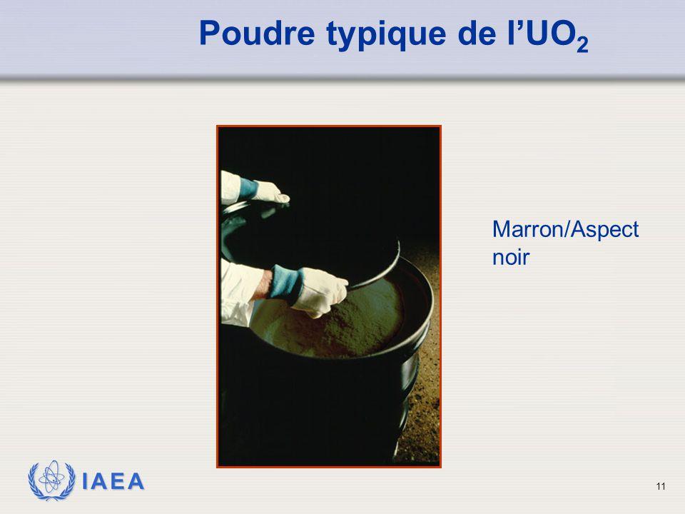 IAEA Poudre typique de l'UO 2 Marron/Aspect noir 11