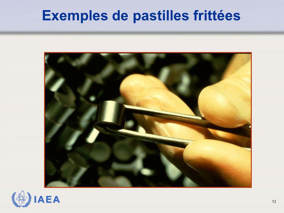IAEA Exemples de pastilles frittées 13