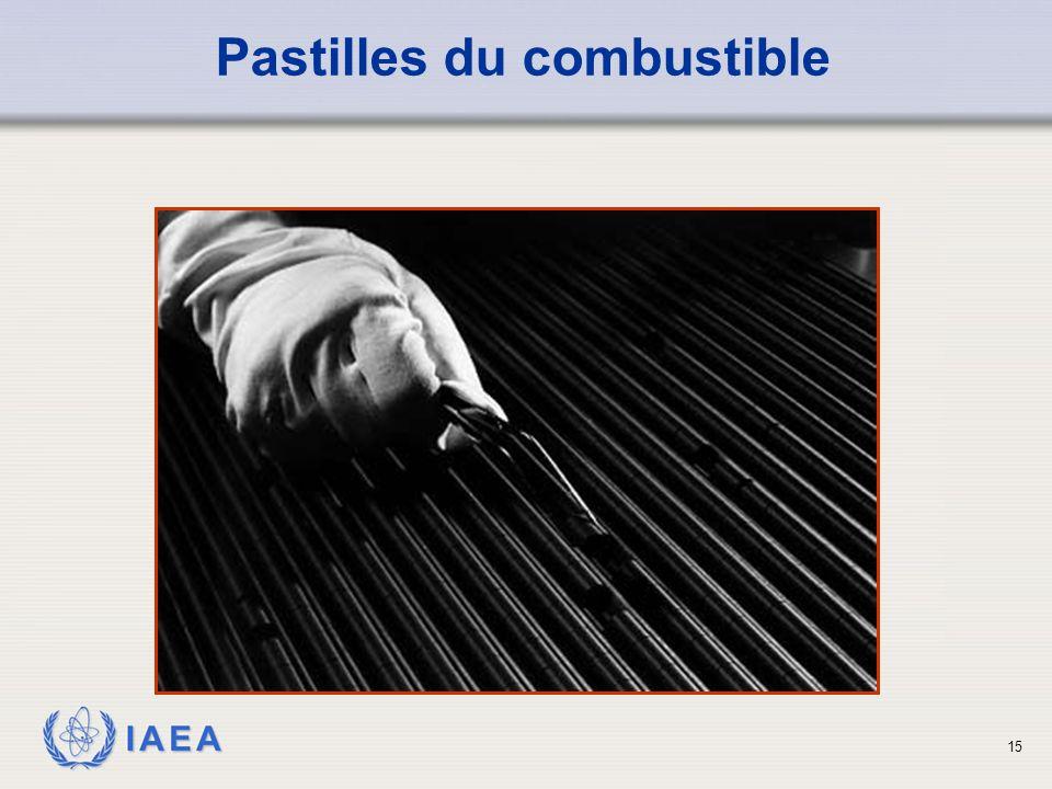 IAEA Pastilles du combustible 15