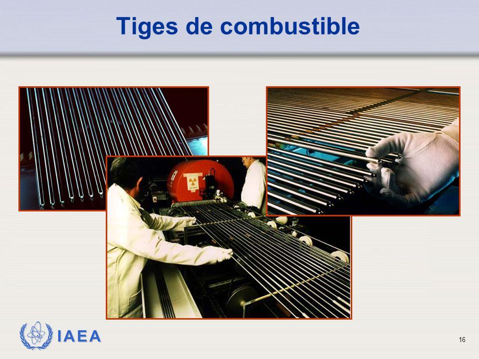 IAEA Tiges de combustible 16