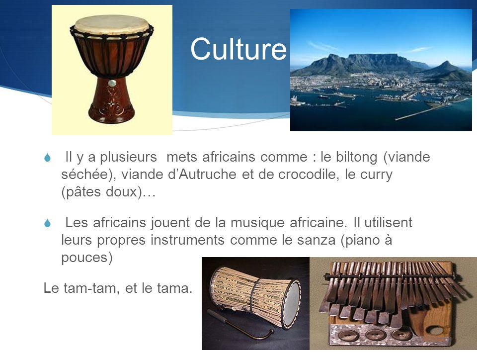 Culture  Il y a plusieurs mets africains comme : le biltong (viande séchée), viande d'Autruche et de crocodile, le curry (pâtes doux)…  Les africains jouent de la musique africaine.