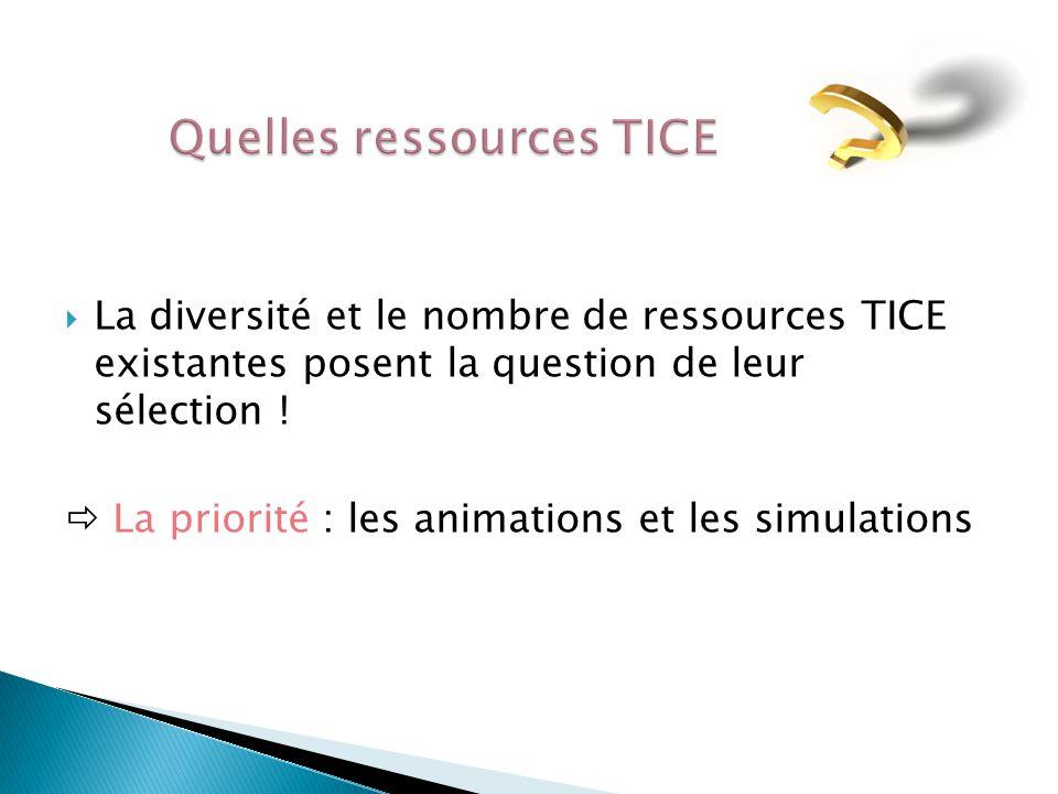  La diversité et le nombre de ressources TICE existantes posent la question de leur sélection .