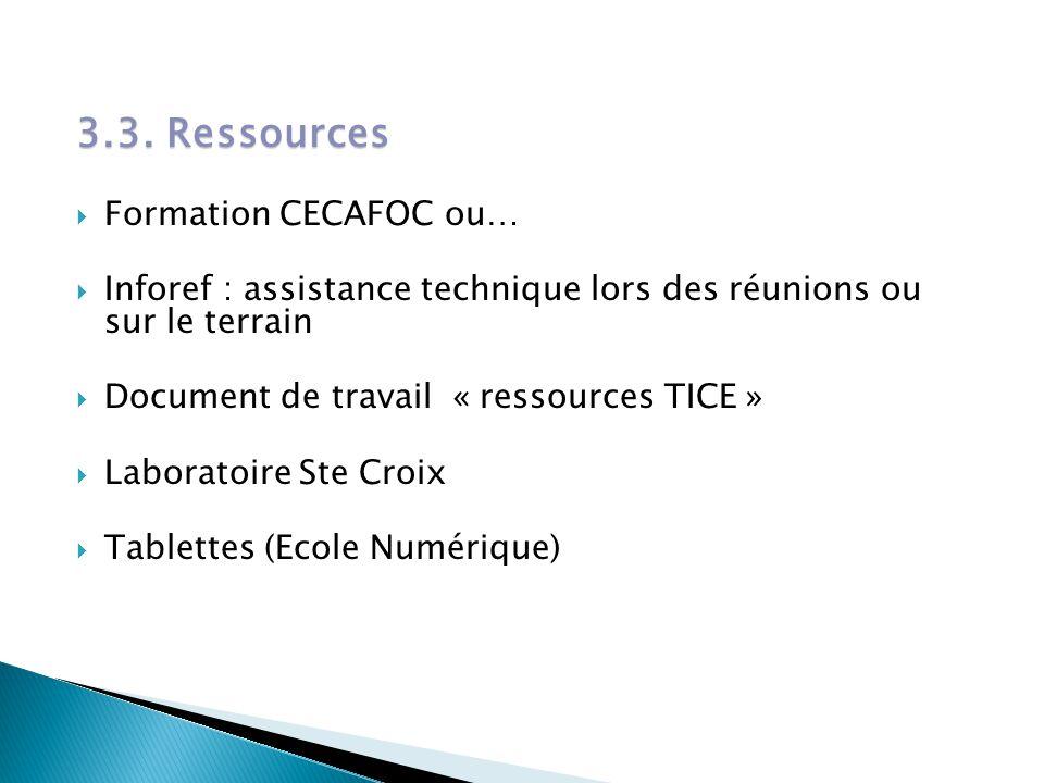 3.3. Ressources  Formation CECAFOC ou…  Inforef : assistance technique lors des réunions ou sur le terrain  Document de travail « ressources TICE »