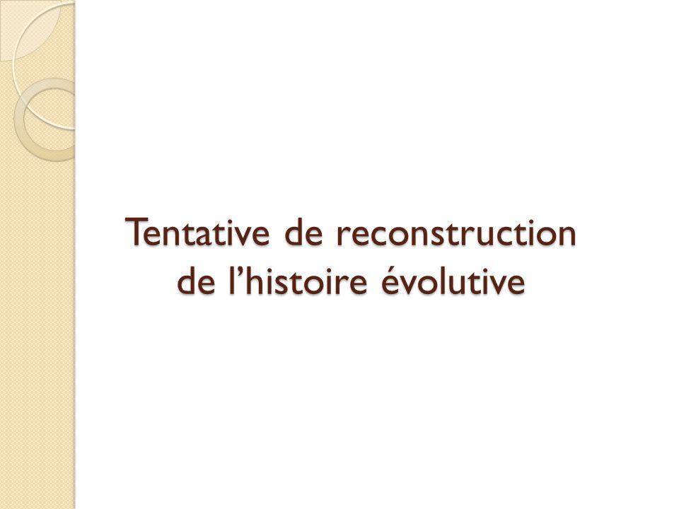 Tentative de reconstruction de l'histoire évolutive