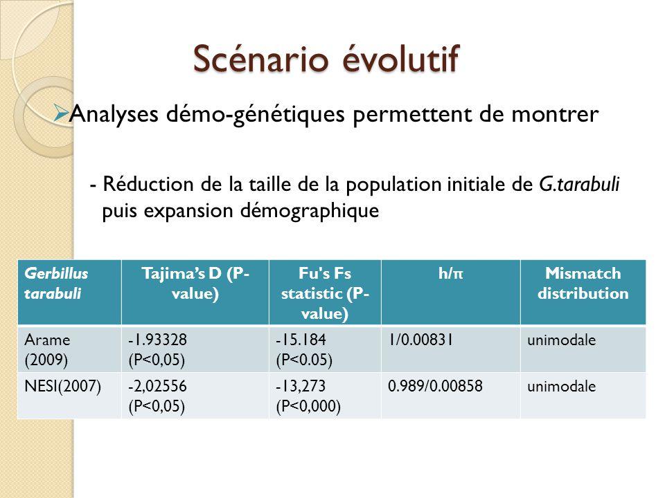  Analyses démo-génétiques permettent de montrer - Réduction de la taille de la population initiale de G.tarabuli puis expansion démographique Gerbill