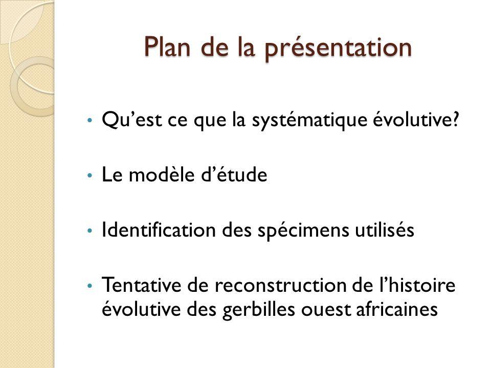 Plan de la présentation Qu'est ce que la systématique évolutive? Le modèle d'étude Identification des spécimens utilisés Tentative de reconstruction d