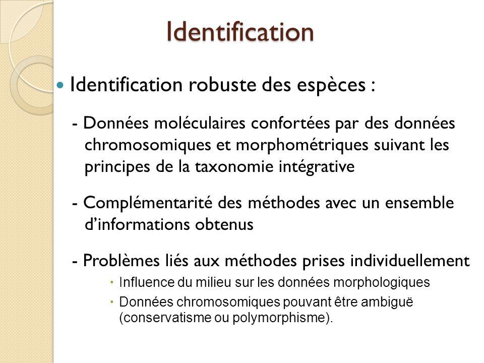 Identification Identification robuste des espèces : - Données moléculaires confortées par des données chromosomiques et morphométriques suivant les pr