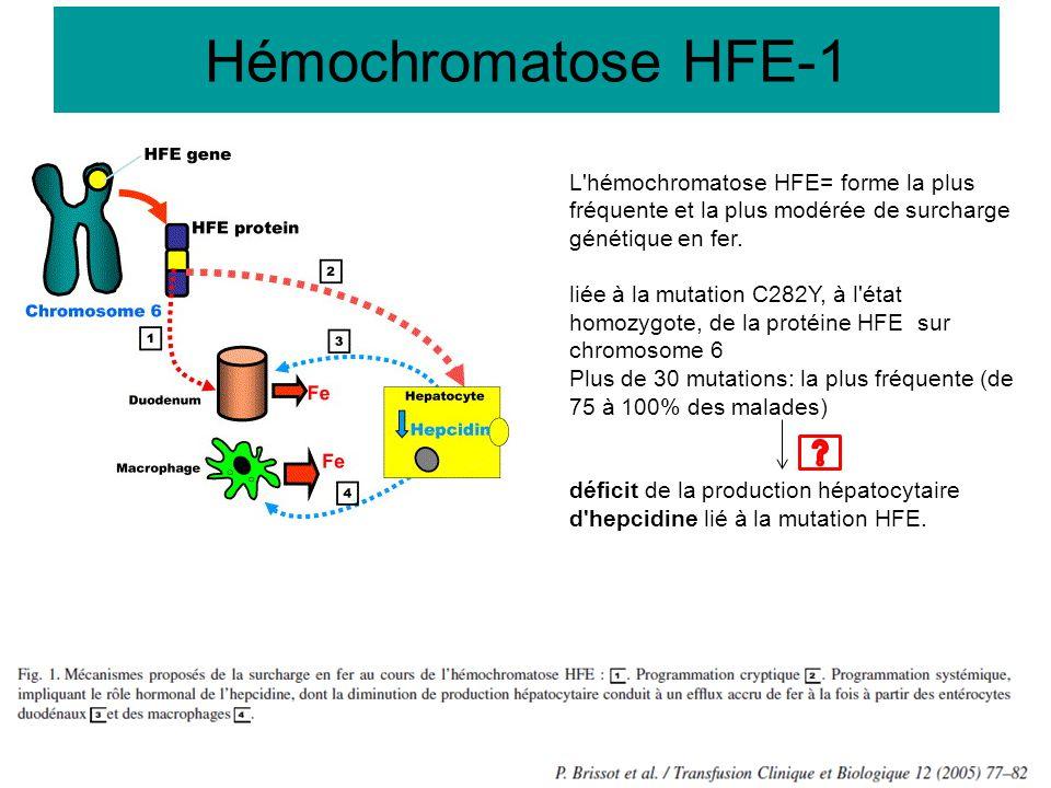 L'hémochromatose HFE= forme la plus fréquente et la plus modérée de surcharge génétique en fer. liée à la mutation C282Y, à l'état homozygote, de la p