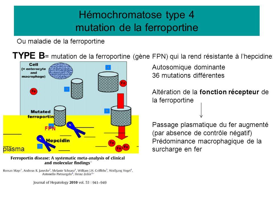 Autosomique dominante 36 mutations différentes Altération de la fonction récepteur de la ferroportine Passage plasmatique du fer augmenté (par absence