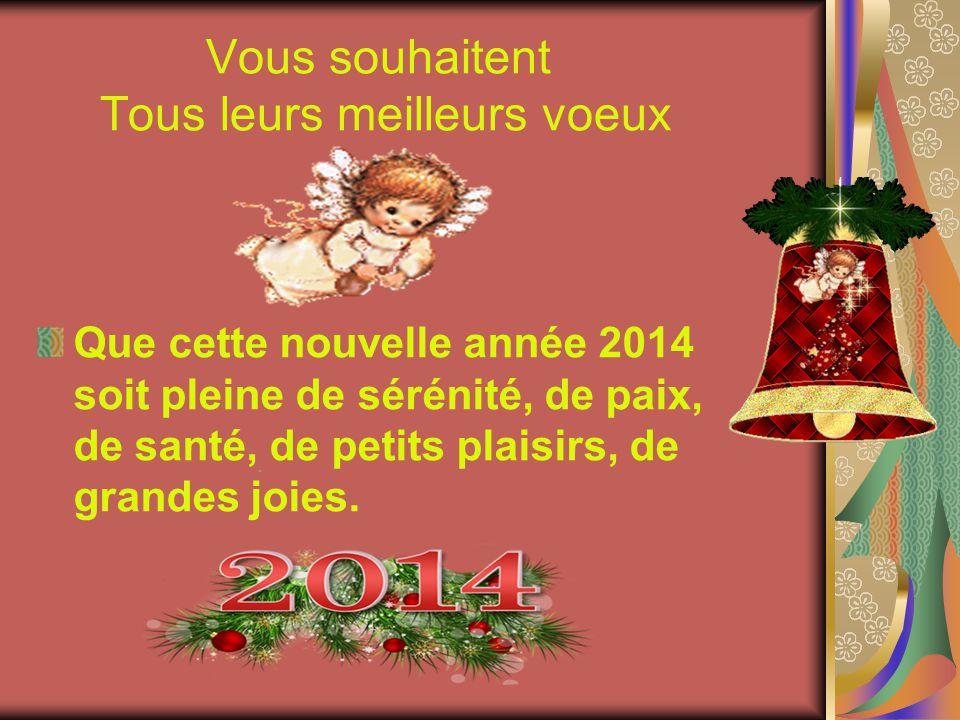 Vous souhaitent Tous leurs meilleurs voeux Que cette nouvelle année 2014 soit pleine de sérénité, de paix, de santé, de petits plaisirs, de grandes joies.