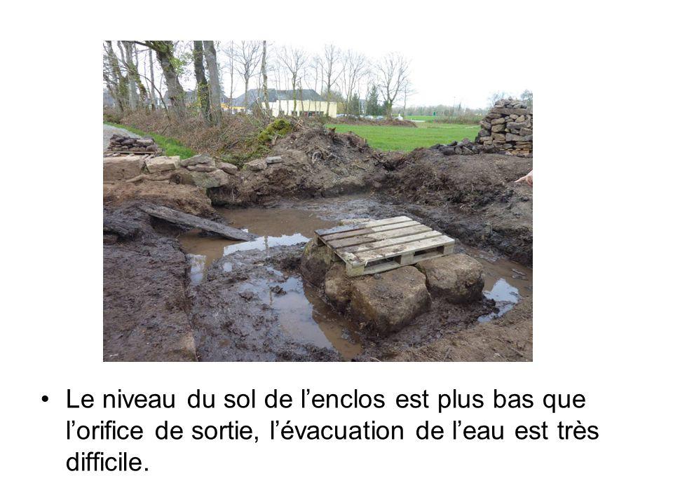 Le niveau du sol de l'enclos est plus bas que l'orifice de sortie, l'évacuation de l'eau est très difficile.