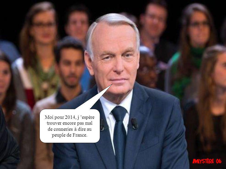 Ma mission pour 2014, c 'est de sauver au moins une entreprise française.