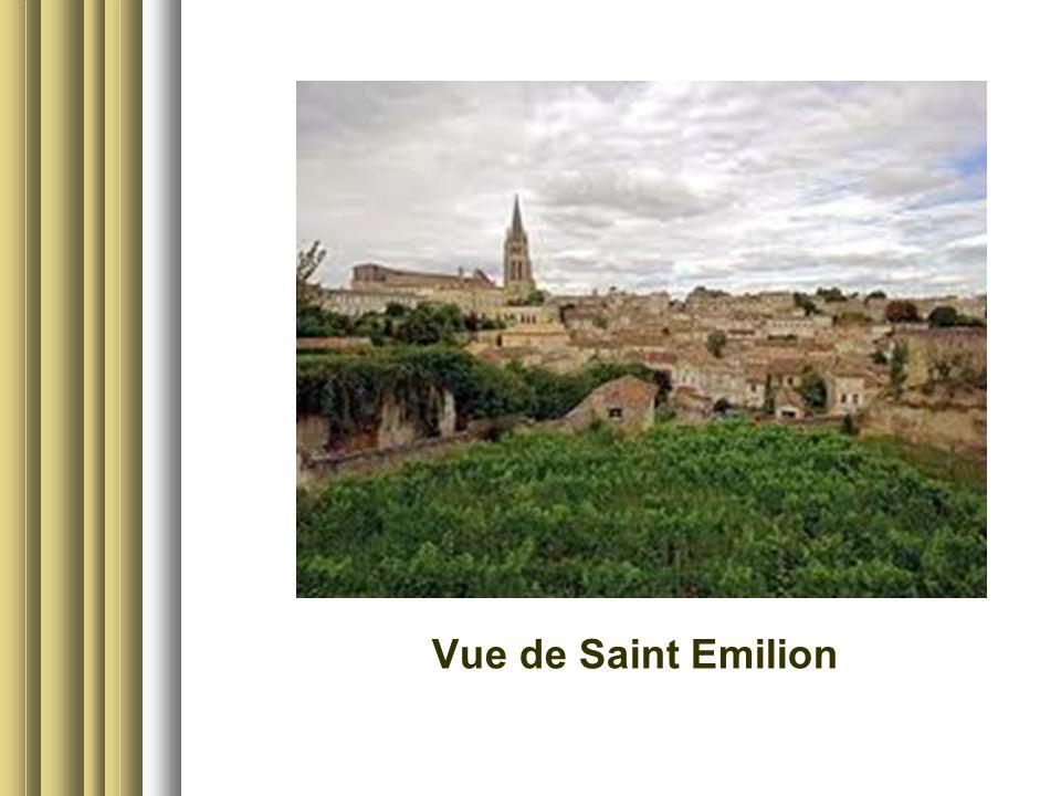 Vue de Saint Emilion