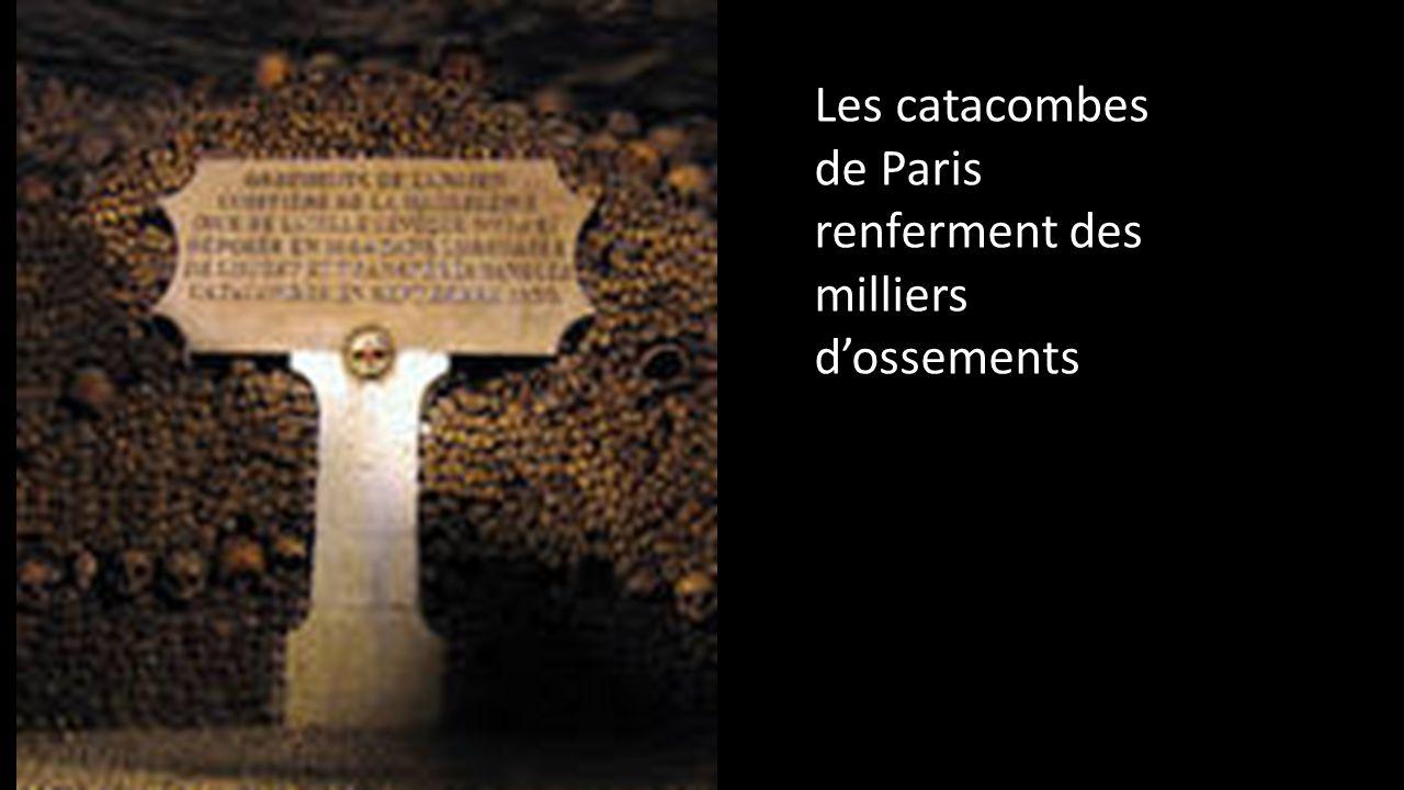 Les catacombes de Paris renferment des milliers d'ossements