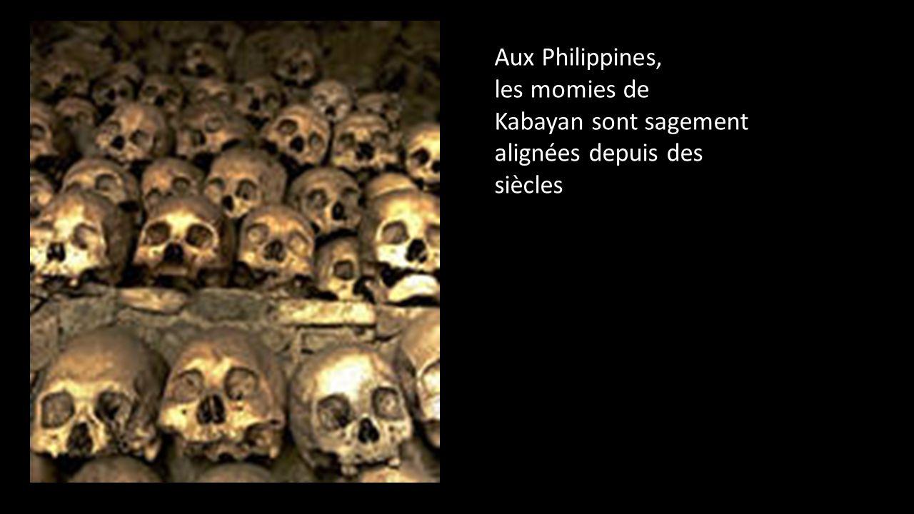 Y sont vendus des animaux momifiés et toutes sortes de produits vaudou