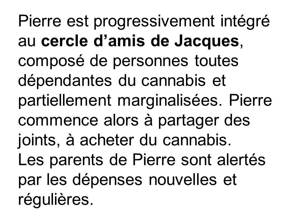 Pierre est progressivement intégré au cercle d'amis de Jacques, composé de personnes toutes dépendantes du cannabis et partiellement marginalisées.