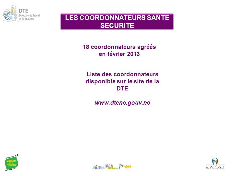 LES COORDONNATEURS SANTE SECURITE 18 coordonnateurs agréés en février 2013 Liste des coordonnateurs disponible sur le site de la DTE www.dtenc.gouv.nc