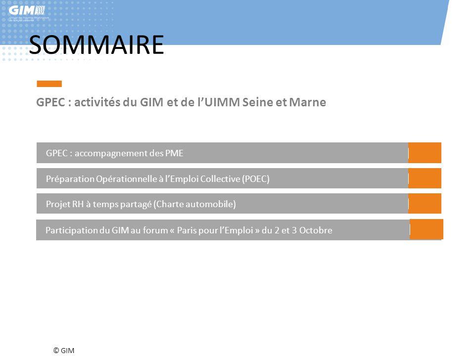 © GIM SOMMAIRE GPEC : activités du GIM et de l'UIMM Seine et Marne GPEC : accompagnement des PME Préparation Opérationnelle à l'Emploi Collective (POE