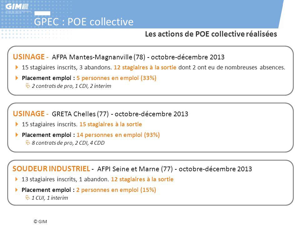 © GIM GPEC : POE collective SOUDEUR INDUSTRIEL - AFPI Seine et Marne (77) - octobre-décembre 2013 13 stagiaires inscrits, 1 abandon. 12 stagiaires à l