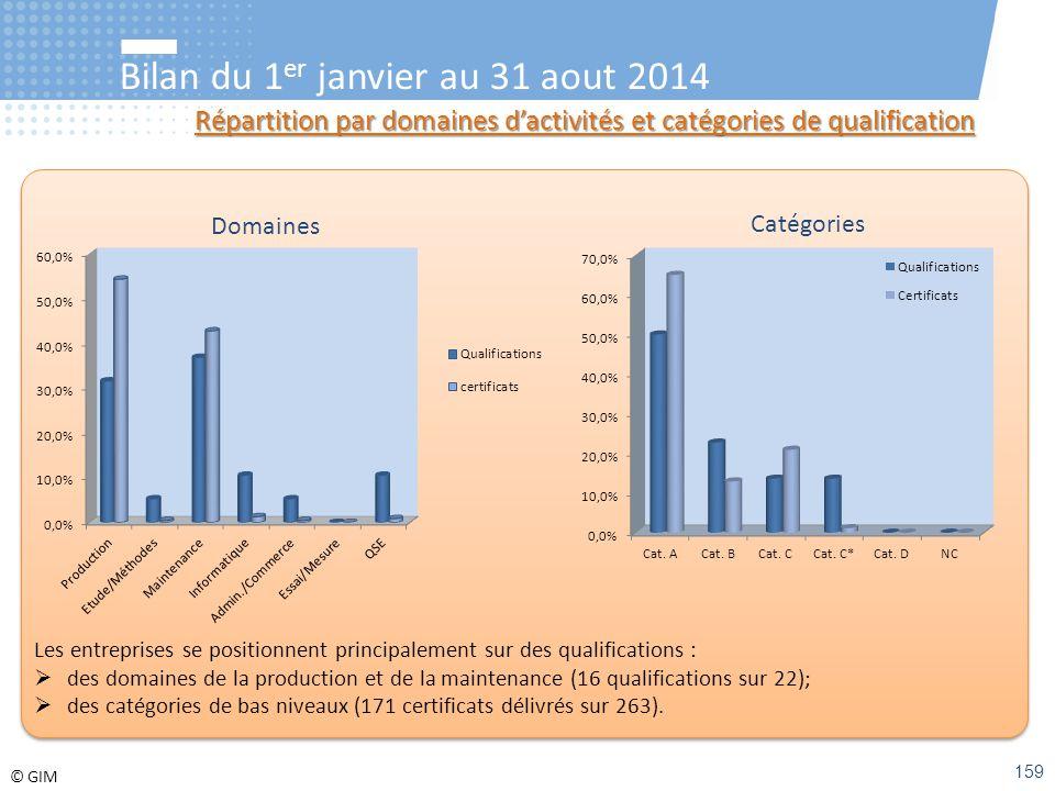 © GIM Bilan du 1 er janvier au 31 aout 2014 Répartition par domaines d'activités et catégories de qualification Domaines Catégories Les entreprises se