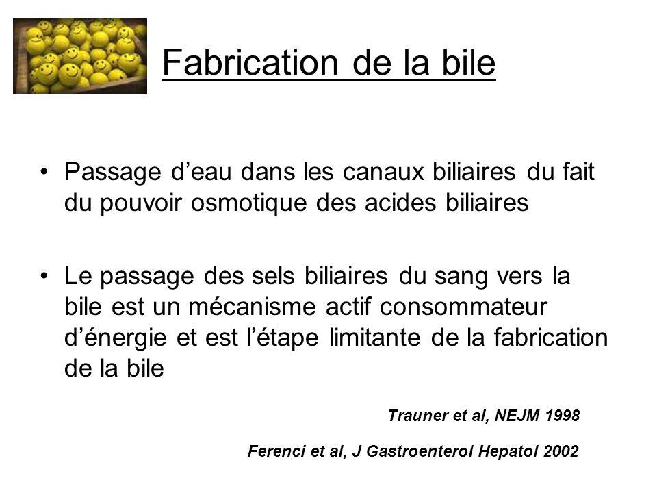 Fabrication de la bile Passage d'eau dans les canaux biliaires du fait du pouvoir osmotique des acides biliaires Le passage des sels biliaires du sang