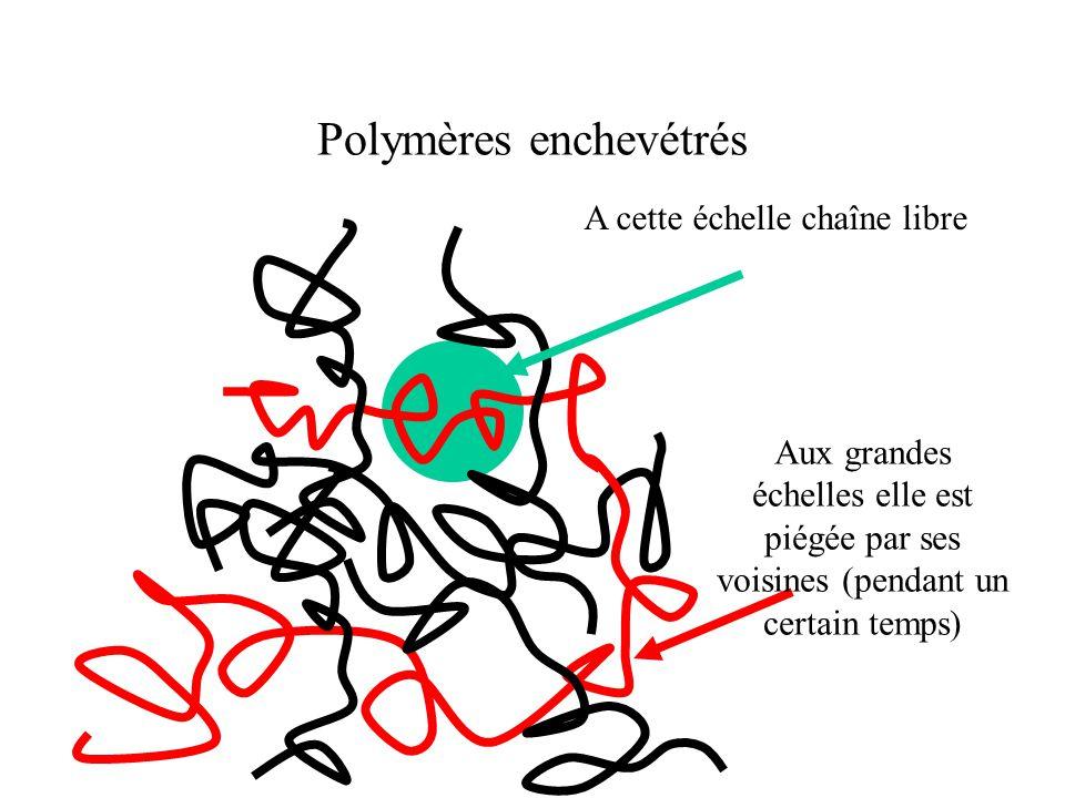 Polymères enchevétrés A cette échelle chaîne libre Aux grandes échelles elle est piégée par ses voisines (pendant un certain temps)