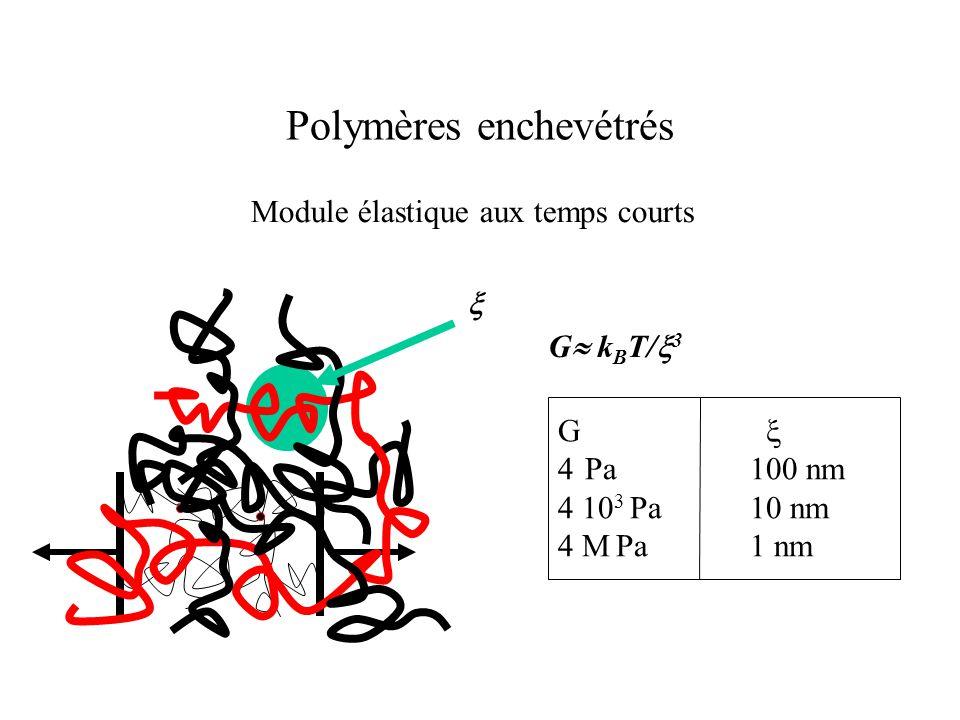 Polymères enchevétrés Module élastique aux temps courts G  k B T/  3 G  4 Pa 100 nm 4 10 3 Pa 10 nm 4 M Pa 1 nm 