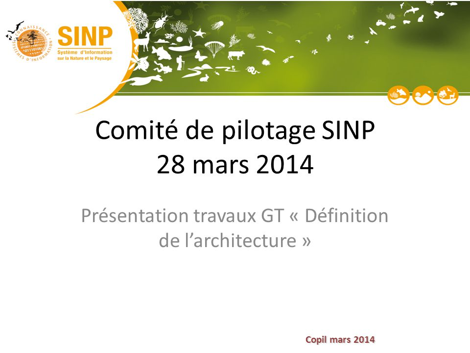 Copil mars 2014 Comité de pilotage SINP 28 mars 2014 Présentation travaux GT « Définition de l'architecture »