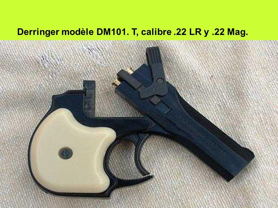 Derringer modèle DM101. T, calibre.22 LR y.22 Mag.