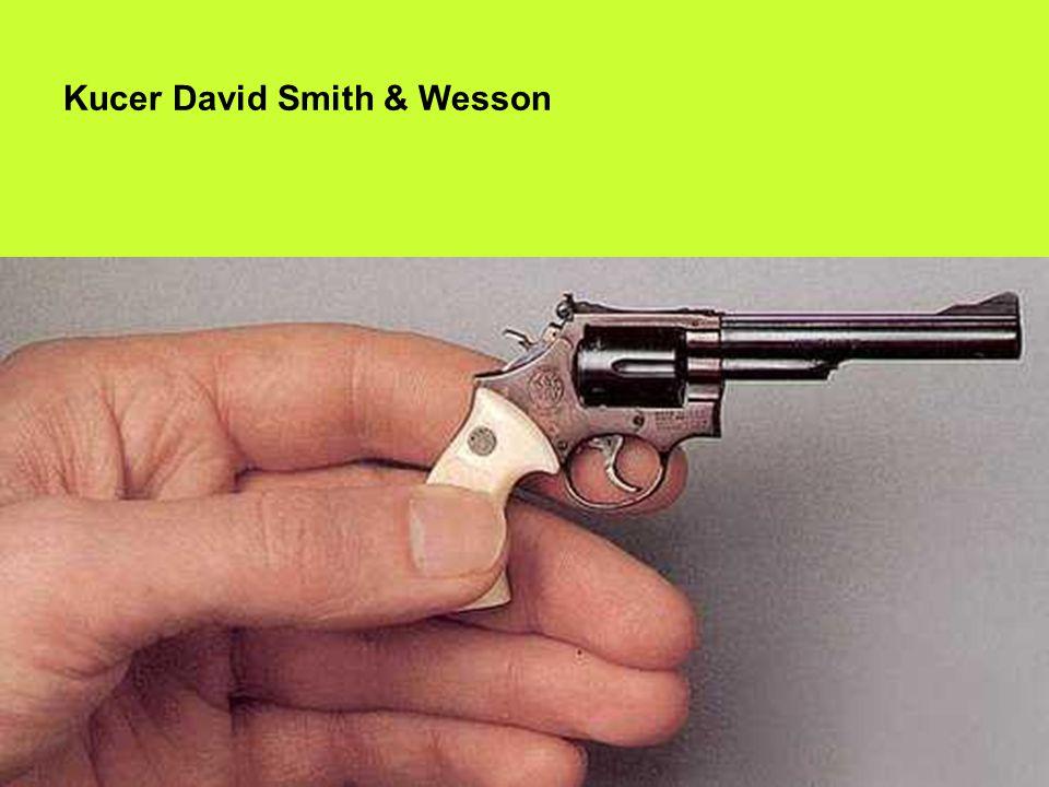 Kucer David Smith & Wesson